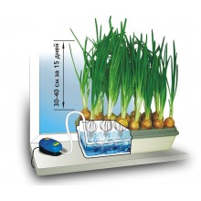 Гидропонная установка для выращивания зеленого лука. Луковое счастье. 1L100086964.
